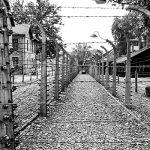 KZ Gedenkstätte Auschwitz