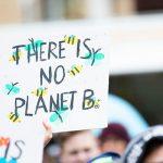 Politik verhindert Ausbau des Naturschutzes im Kreis Segeberg